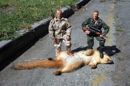 ecureuils-geants.jpg