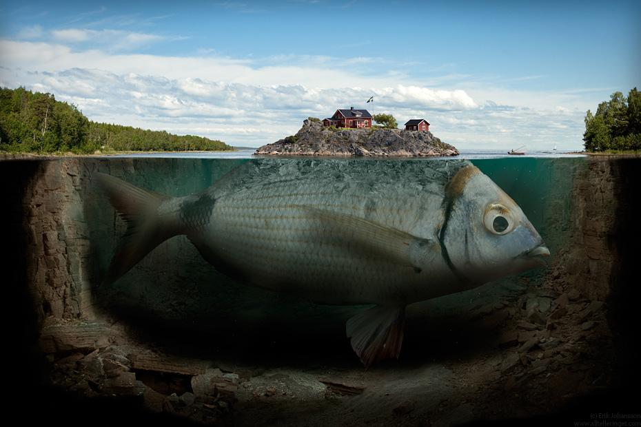 Gros poisson