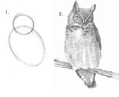 Apprendre dessin