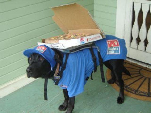 Livreur pizza