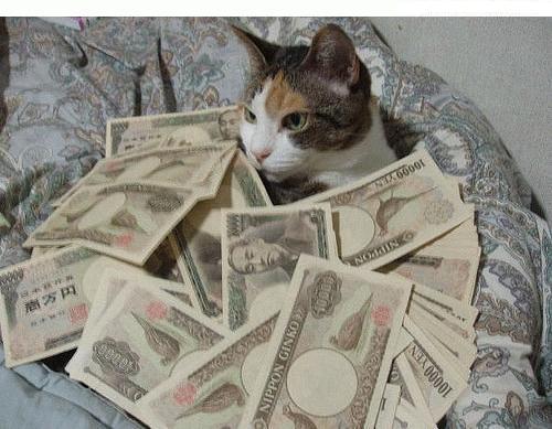 chat_argent