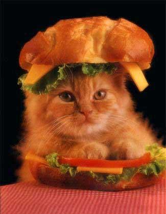 chat_burger