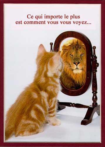 Bienvenue dans le monde de Abdallah  chat_lion