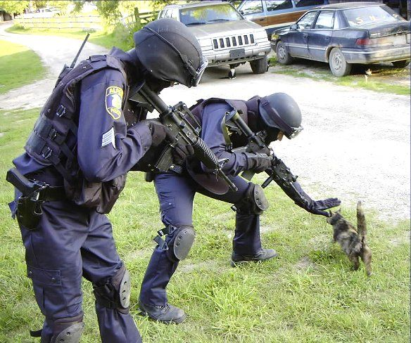 chat policiers