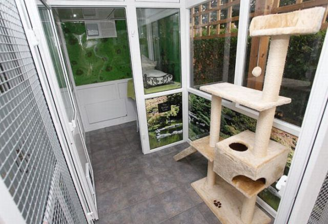 h tel pour chats. Black Bedroom Furniture Sets. Home Design Ideas