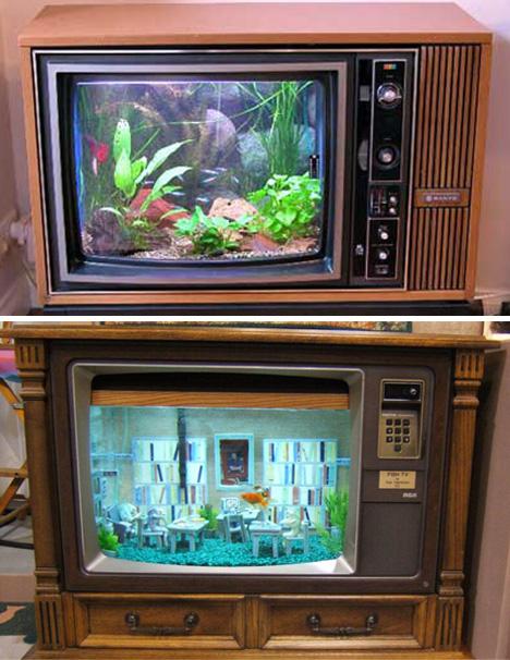 Aquarium télévision