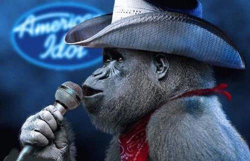 http://www.villiard.com/images/animaux/singes/cowboy-singe.jpg