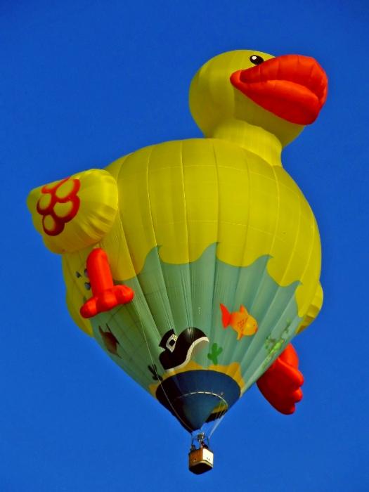 canard-mongolfiere