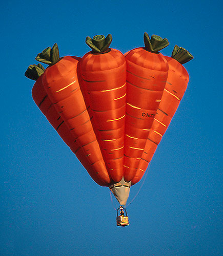 G [Anes] 230 carottes Carottes