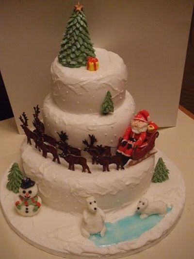 Winter Party Cakes