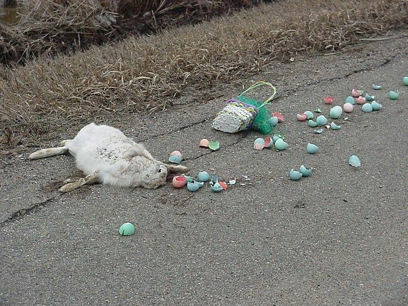 lapin de pâques dans la rue