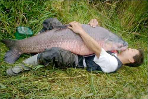 Télécharger sur landroïde la pêche avec modom il y a beaucoup d argent
